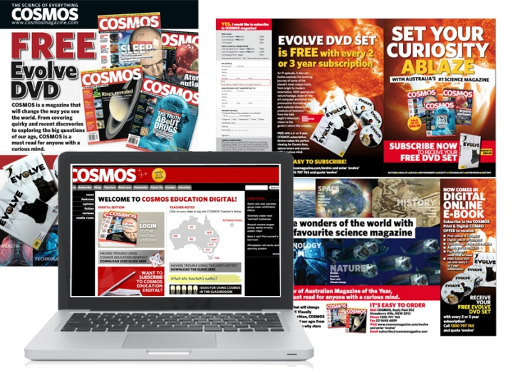 Online and print marketing collateral